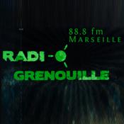 Visuel Radio Granouille